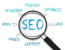 Web Design - Search Engine Optimization